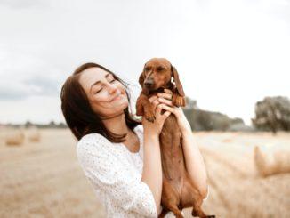 Wann ist eine Hundeversicherung sinnvoll?